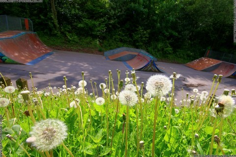 Photo 17 of Heathfield skate park in East Sussex, a great place for skateboards, roller blades, quad skates and BMX's.